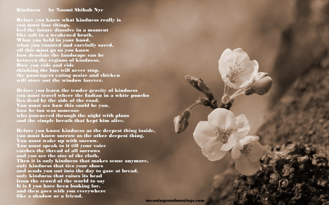 Kindness A Poem By Naomi Shihab Nye MEANINGS AND MUSINGS