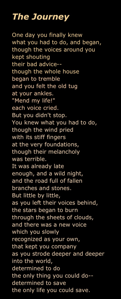 Journey - Mary Oliver